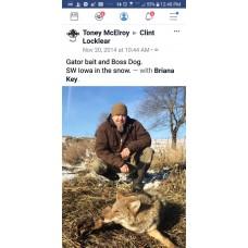 Predator Lure Proof